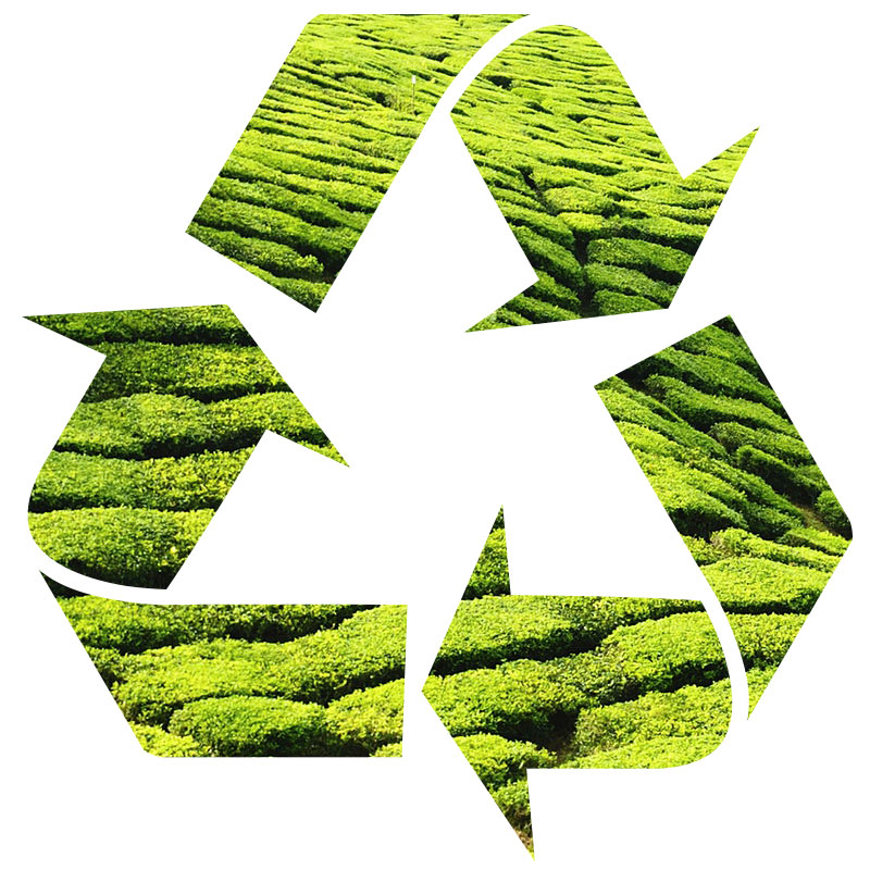 Green, Environment-Friendly Packaging, Eco-Packaging | RESPACK